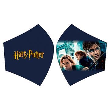 Mascarilla Harry Potter y sus amigos azul